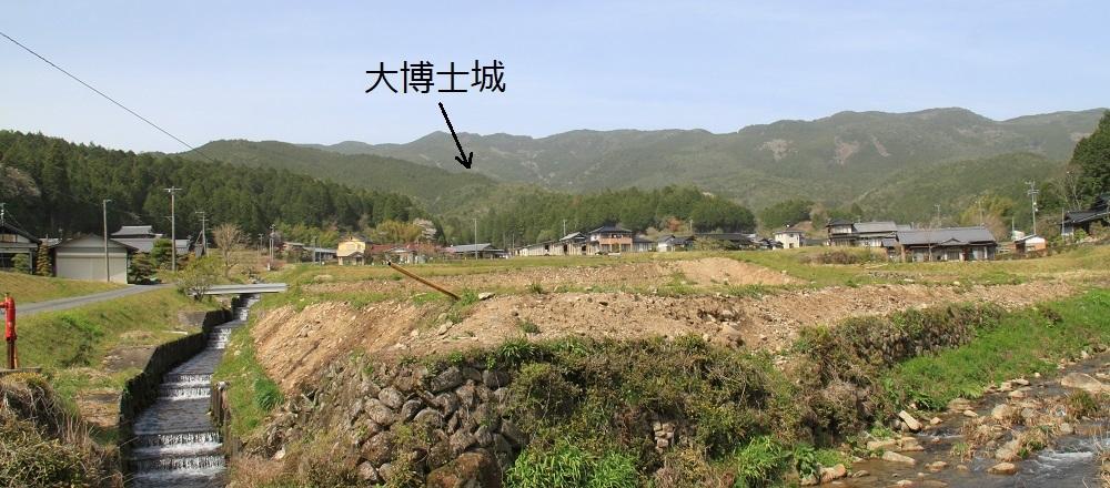 daihakase (13)