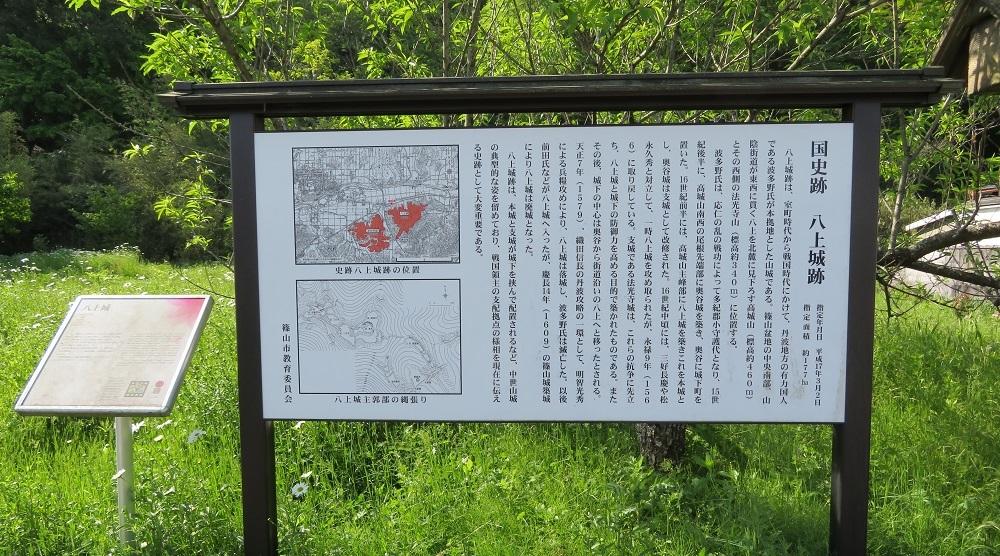 t-yagami(2).jpg