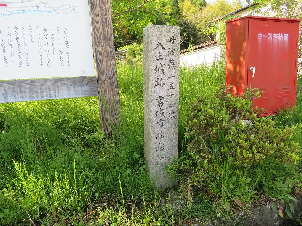 t-yagami(4).jpg