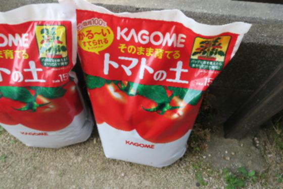 トマトの土1