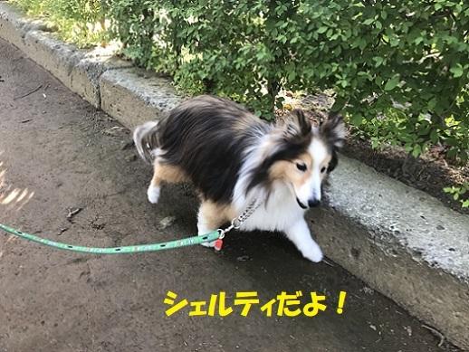 レオン北鎌倉3