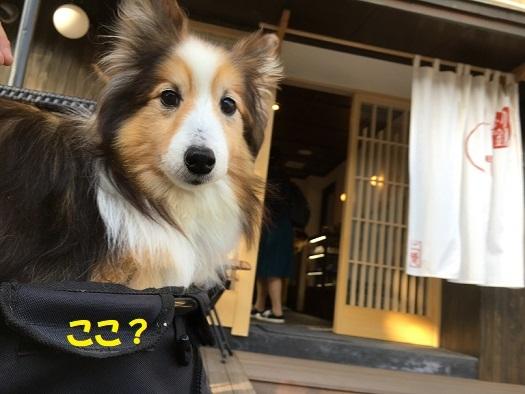 レオン北鎌倉4