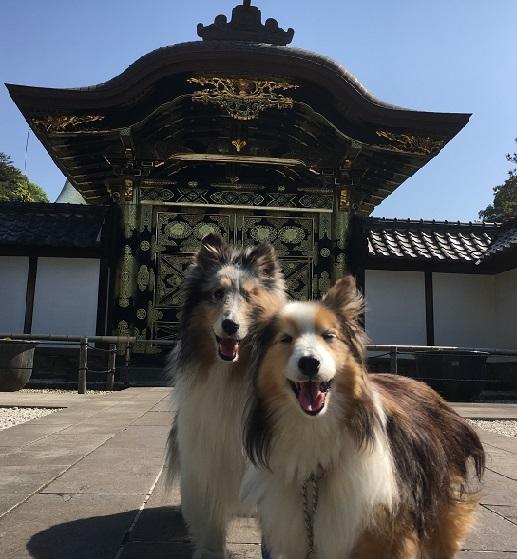 お寺散歩4