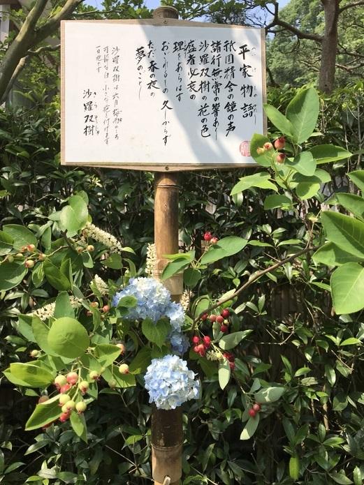 北鎌倉03