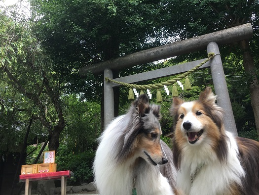 源氏山公園2