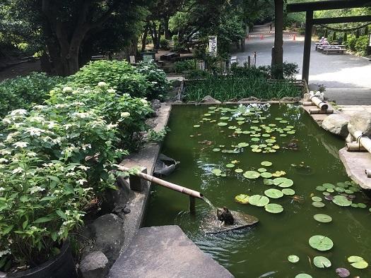 源氏山公園4