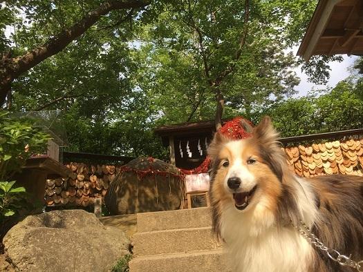 源氏山公園91