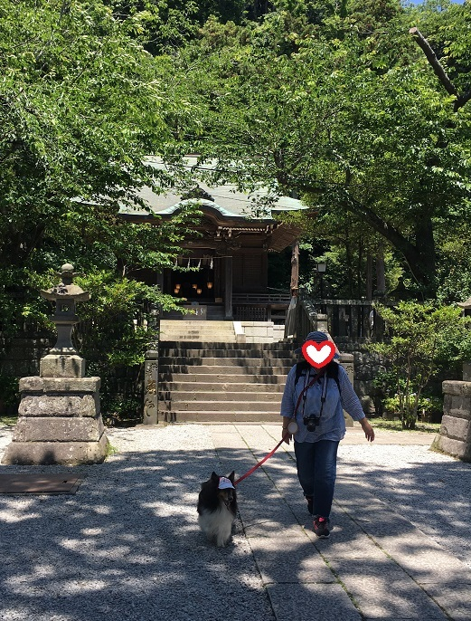 お寺散歩1