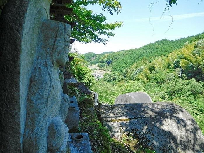 老木と仏様3005 (2)