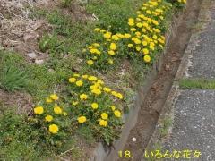 花の里18