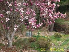 花の里20