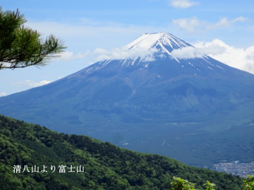清八山より冨士山