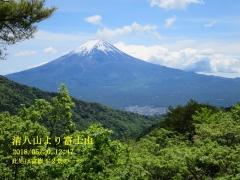 清八山より富士山