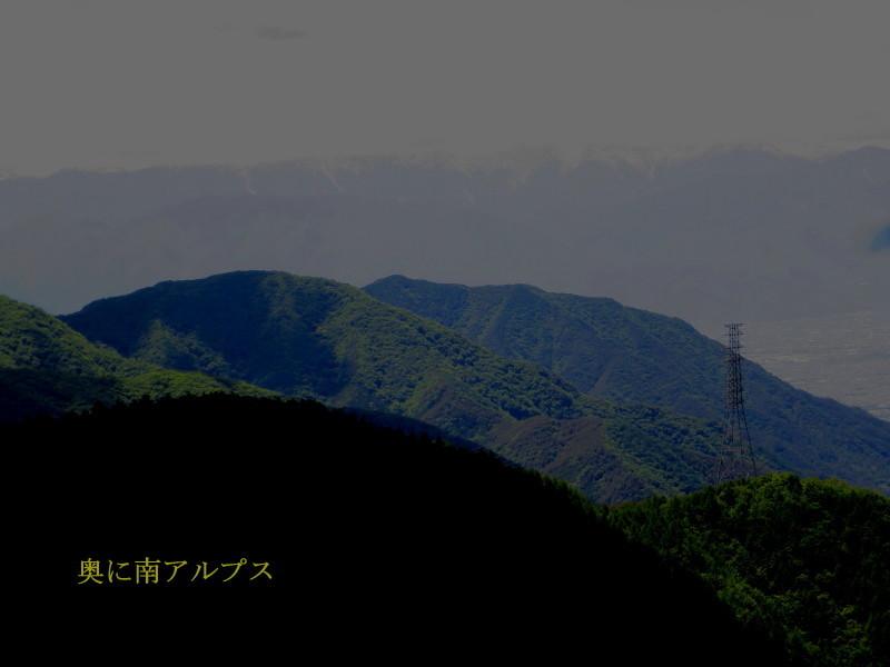 IMG_8746_1.jpg