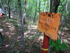 林道終点(日留賀岳は左へ)