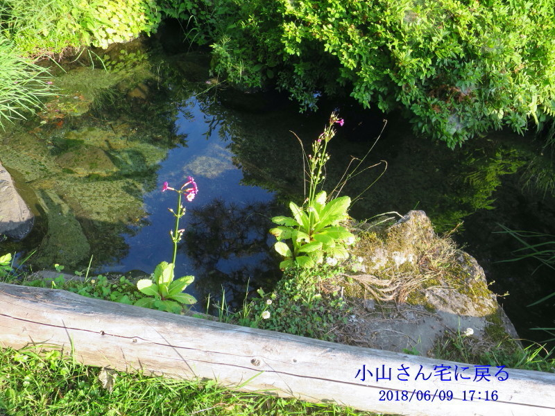 IMG_8904_1.jpg