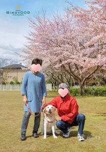 2016-0408-家族写真