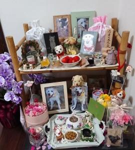 20180402-風花-リビング祭壇