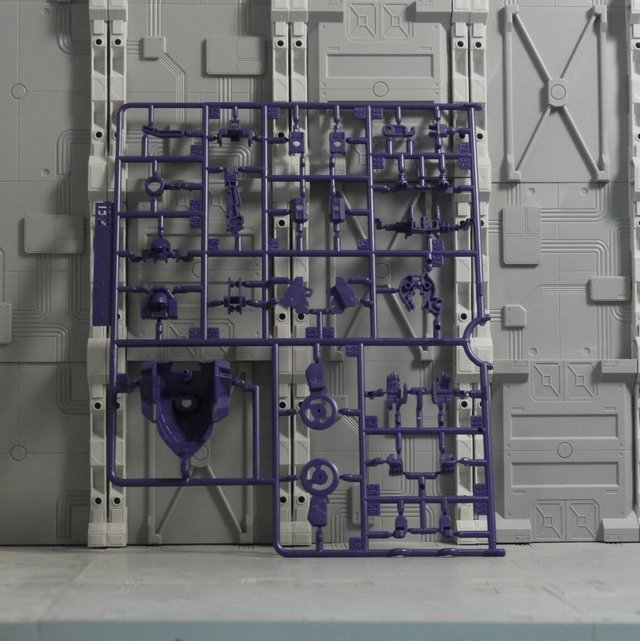 TR6_B2