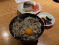 関の鯖鮨と釜揚げしらす丼