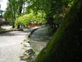 上賀茂神社は水の社