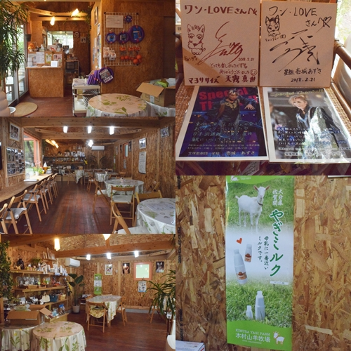 森カフェ2