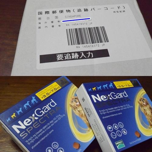 NGS1.jpg