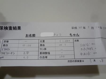 DSC03950sd.jpg