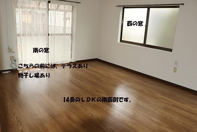0A1A2249-31752153222.jpg
