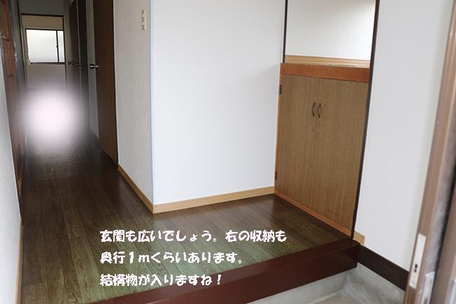 0A1A2264-314652166.jpg