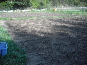 180421第1圃場にアミノ酸肥料撒く