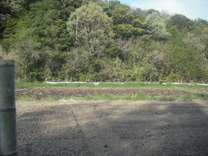 180422NO3圃場堆肥撒く1