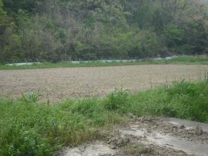 180423耕耘した上の田