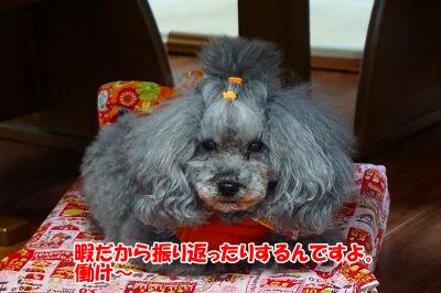 q-DSC00088.jpg