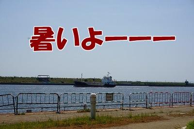 s-DSC03312.jpg