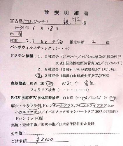 C17ウミ (2)