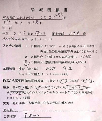 C19ユウキ (3)