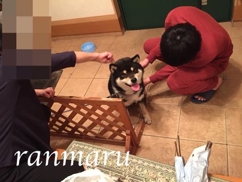 まるちゃん2018042701