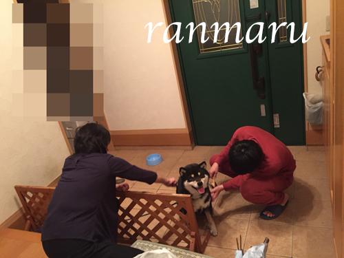 まるちゃん2018042702