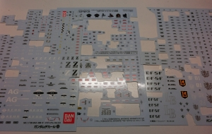 CIMG5002.jpg