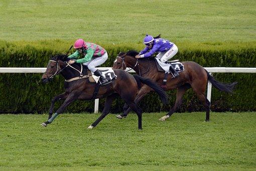 horse-racing-1577292__340.jpg