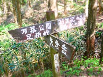 男子登山4