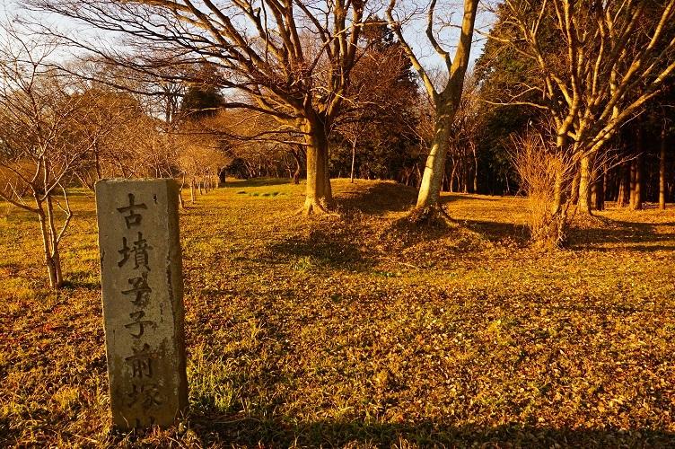 11 子子舞塚古墳跡 南から後円部北側附近