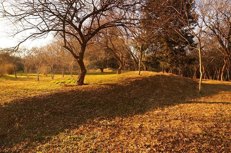 12 子子舞塚古墳跡 南から後円部北側附近