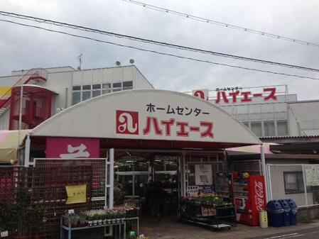 蜜柑海老のシュリンプ奮闘記