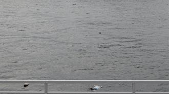 遊覧船 べんてん丸 乗り場付近 TARI TARI 聖地巡礼
