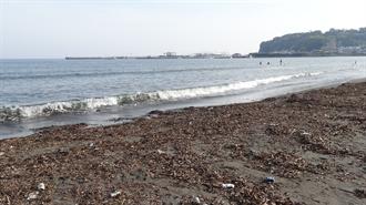 片瀬東浜海水浴場 TARI TARI 聖地巡礼