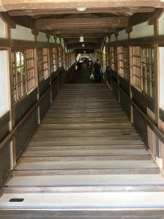 ぴかぴかの回廊