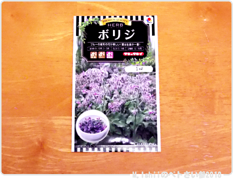 春夏向け栽培2018の種05