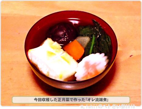 ペトさい(正月菜R)39